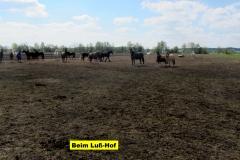 2017_04_23_So-Runde-HöllseeIMG_4256_1
