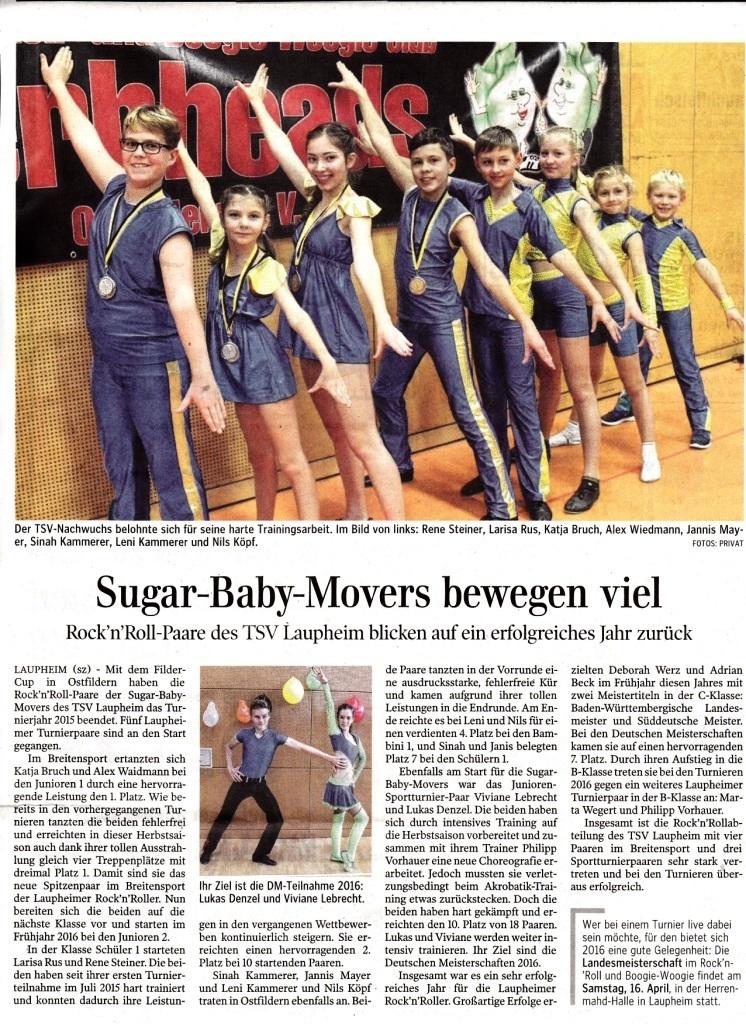 Zeitungsartikel 11 12 2015