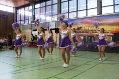 rock_roll_stadtmeisterschaft_2017_Laupheim_cheerleader3